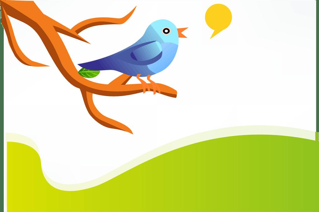 %name Twitter